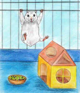 детские стихи про животных, веселые стихи животные, детские стихи о животных, короткие стихи про животных, добрые стихи животных